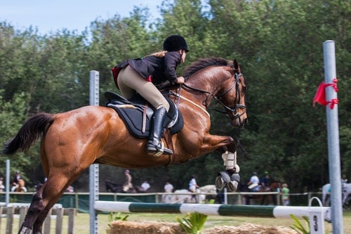 Is Western Riding Safer than English Riding?