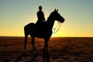 Does Horse Riding Make You Lose Weight?