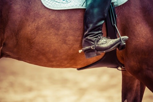Best Horse Riding Boots