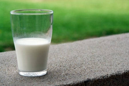 Is Horse Milk Good for Humans?